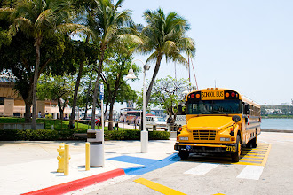 Photo: The famous American school bus