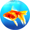 Goldfish Live Wallpaper icon