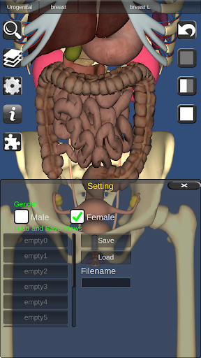 3D Bones and Organs (Anatomy) 3.1.0 screenshots 8