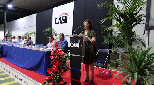 Miguel Vargas, Bernabé Martín, Antonio Bretones: uno será hoy presidente de CASI