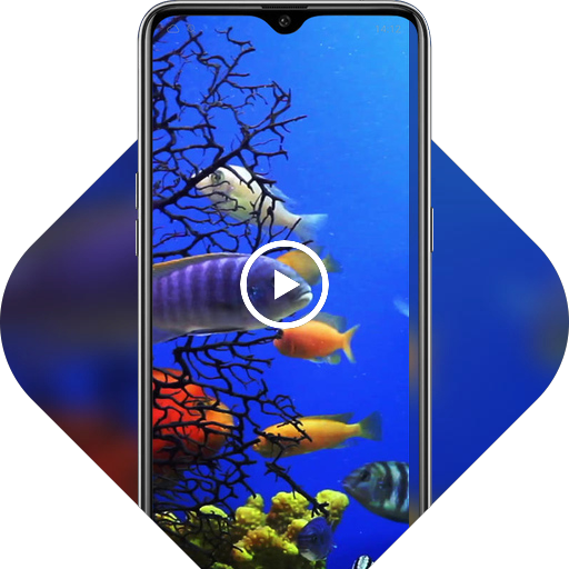 Colorful cute underwater fish live wallpaper