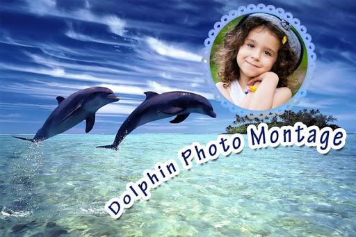 Dolphin Photo Montage