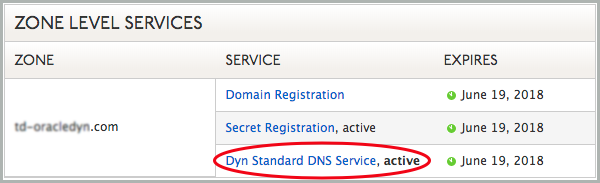 A red circle highlights the Dyn Standard DNS Service link.