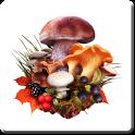 The Mushroom Navigator icon