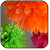 Paper Flowers file APK Free for PC, smart TV Download