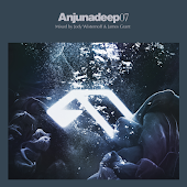 Not The Only One (Anjunadeep 07 Mix)