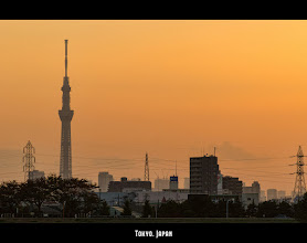 Photo: The Tokyo Sky Tree towers above Tokyo at dusk