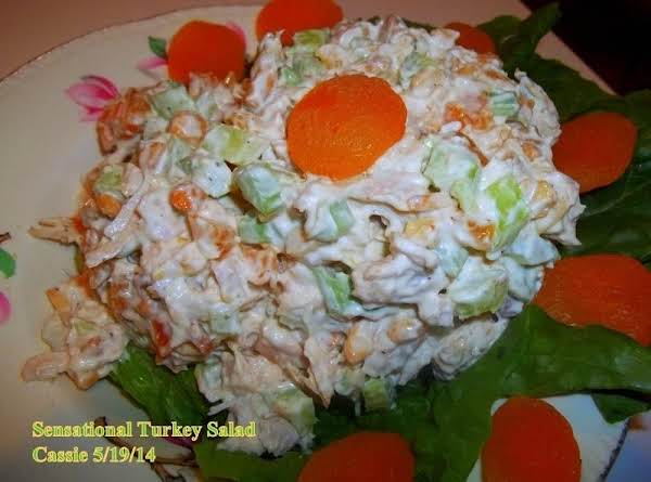 Sensational Turkey Or Chicken Salad Recipe