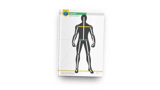 anatomia claytrix