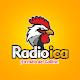Radio Ica APK