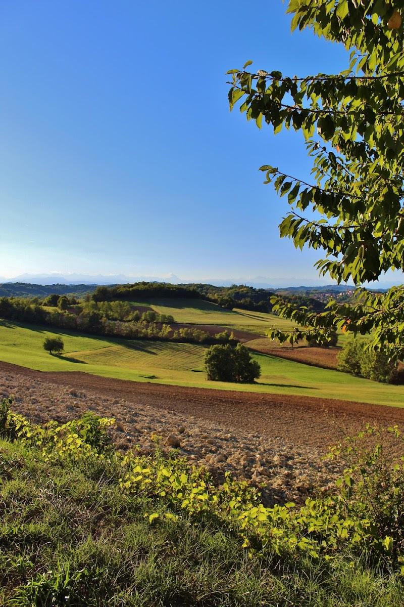 Le colline Astigiane di crilla92
