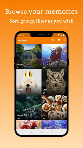 Screenshot for Simple Gallery Pro - Photo Manager & Editor in United States Play Store