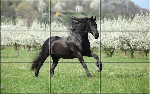 Puzzle - Beautiful Horses 1.24 screenshots 7