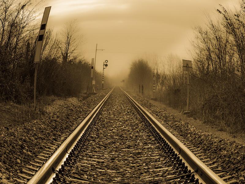 journey through the fog di gasparella andrea
