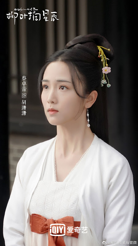 My Wife is a Thief China Web Drama