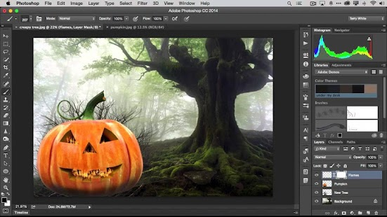 Manual For Photoshop For PC - náhled