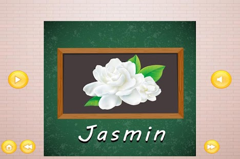 Download Learn To Speak Flower Names For PC Windows and Mac apk screenshot 4