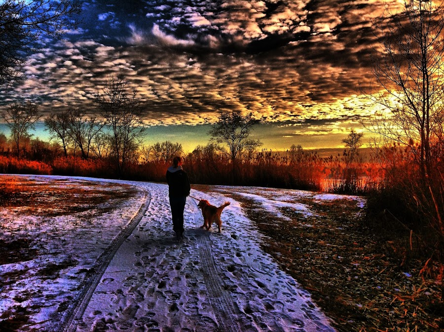 by Lori Taylor - Instagram & Mobile Other ( clouds, winter, park, sunset, family )