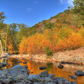 Fall Reflection by James Reil - Landscapes Mountains & Hills ( stream, fall colors, hdr, autumn, west virginia, foliage, fall, canaan valley )