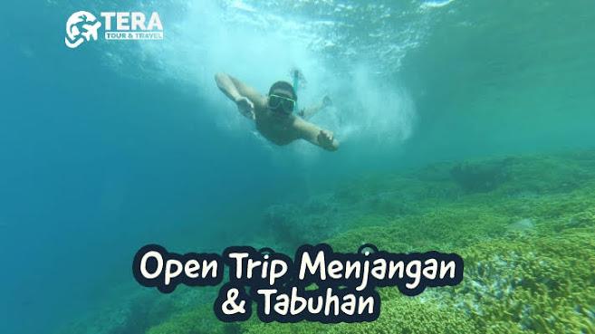 https://www.teratnt.com/2019/01/open-trip-pulau-menjangan-dan-tabuhan.html