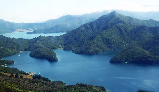 Ponant-New-Zealand-Picton1.jpg - Visit the islands and inlets of Marlborough Sound on a Ponant luxury cruise.