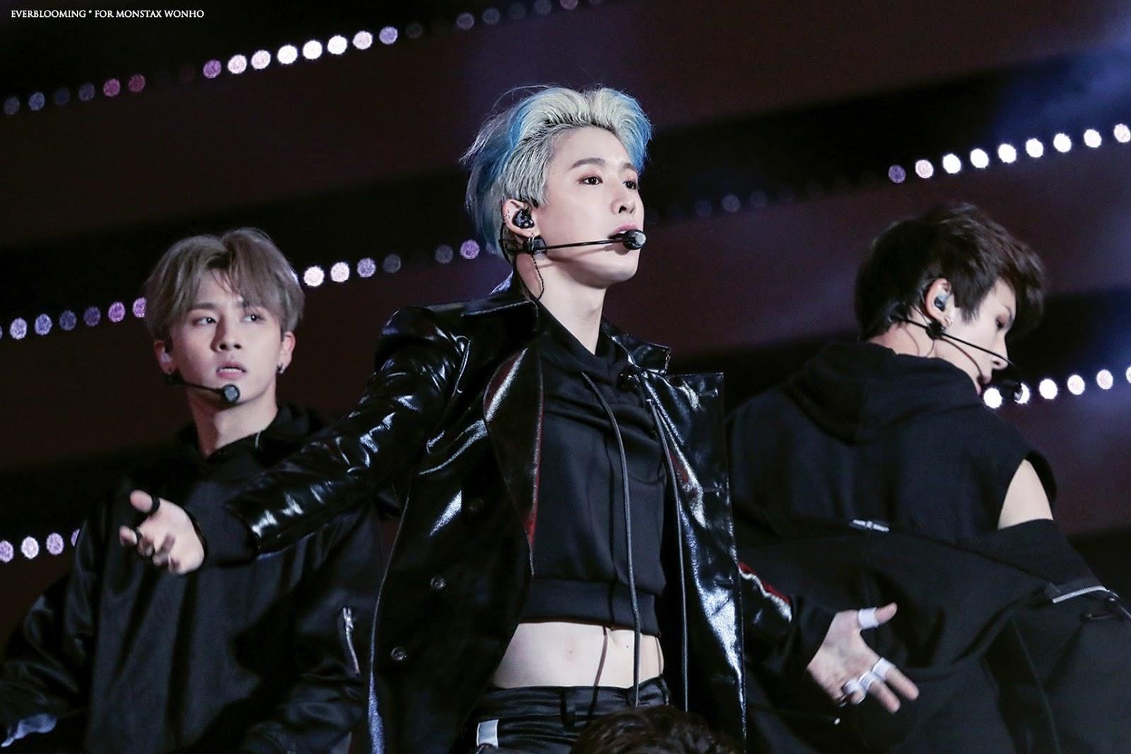 wonho=croptop