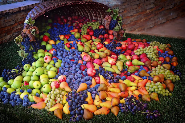 Frutta a volontà! di Patrix