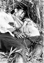 Photo: BÊN THẮNG CUỘC - HUY ĐỨC                 Hai mươi lăm (25) tù nhân của Việt Cộng , chủ yếu là dân thường và bao gồm ba phụ nữ, tất cả họ bị xiềng xích và khoá, đã bị bắn chết bởi Việt cộng, trước đó vài phút khi quân đội Chính phủ Việt Nam, cùng với cố vấn Mỹ, đến hiện trường. Sự kiện bi thảm này xảy ra ngày thứ tư tại ấp Phú Lâm, cách Sài gòn khoảng 70 dặm, khu vực tỉnh đồng bằng sông Vĩnh Long.  Thông tin chi tiết của vụ nổ súng đã được tiết lộ bởi 5 năm trong số các nạn nhân còn sống sót . Năm người sống sót đã được cưa khỏi xiềng xích trước khi máy bay trực thăng giải cứu đưa đến bệnh viện tại Cần Thơ. Một nạn nhân chết ngay sau khi được giải thoát, một nạn nhân khác thoát khỏi chấn thương nghiêm trọng một cách kỳ diệu và ba nạn nhân khác vẫn còn trong tình trạng nguy kịch.  http://www.vietnam.ttu.edu/virtualarchive/items.php?item=VA004474  Twenty-five prisoners of the Viet Cong--mostly civilians and including three women--all of them chained and padlocked--were gunned down by their communist captor just minutes before Vietnamese Government troops, accompanied by American advisors, arrived on the scene. The tragic incident took place Wednesday in the hamlet of Phu Lam some 70 miles southwest of Saigon in the Delta Province of Vinh Long.  Details of the shooting were revealed by five of the victims who were still alive to elements of ARVN 9th Division and Regional and Popular Forces of Vinh Long Province. The troops had just begun Operation Long Phi 962. The five survivors had to be hacksawed from their chains before rescuing helicopters could fly them to the hospital at Can Tho. One died shortly after being freed - one miraculously escaped serious injury and three remain in critical condition.