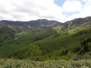 笹原となり周りの景色が見えて