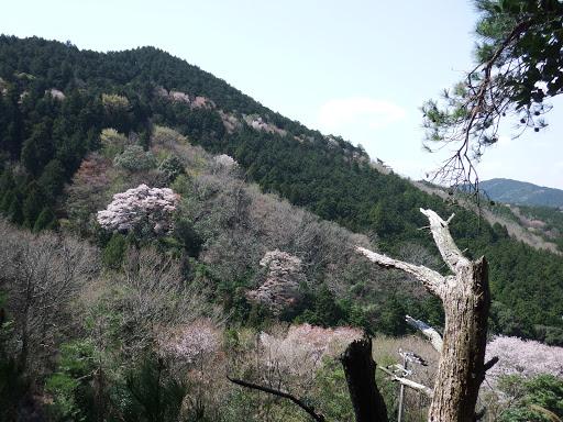 左手に額堂山(右端に京ヶ峯)