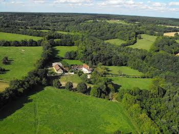 propriété à Treigny (89)