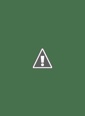 Kekkai Sensen & Beyond Episode 11