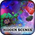 Hidden Scenes - Flower Power icon