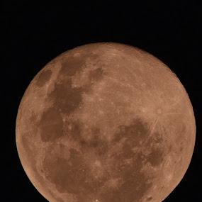 Moon  by Donna Namali - Landscapes Starscapes