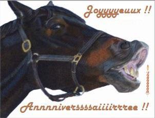 C:\Users\PROPRIETAIRE\Desktop\Nouveau dossier\anniversaire animateurs\carte-anniversaire-cheval-qui-rit-joyeux-anniversaire.jpg
