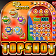 TopShot Android apk
