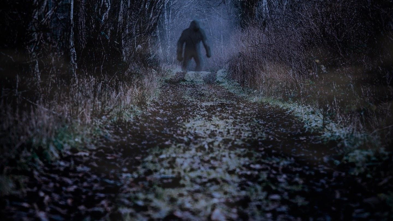 Watch Finding Bigfoot live