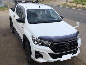 ハイラックス 4WD ピックアップのカスタム事例画像 LiYuさんの2021年06月23日02:13の投稿