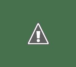 Photo: From My Front Door