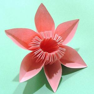 Hướng dẫn dễ dàng Origami