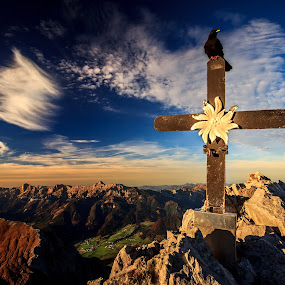 a bird on a cross by Zoltan Duray - Landscapes Mountains & Hills ( hill, mountain, kalbling, sun, bird, resting, village, nature, fly, sunset, sunrise, halt, best bird head picture, austria, flower, cross, gesäuse, , garyfonglandscapes, holiday photo contest, photocontest )