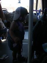 Photo: ismerkedés a busszal