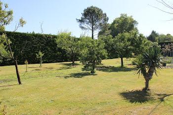 terrain à Belin-Béliet (33)