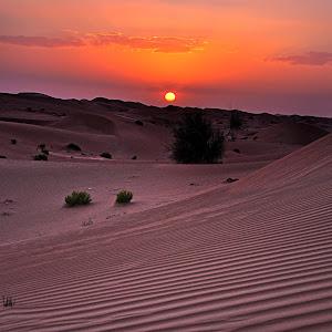 desert 17jun12 DSC_0435.JPG
