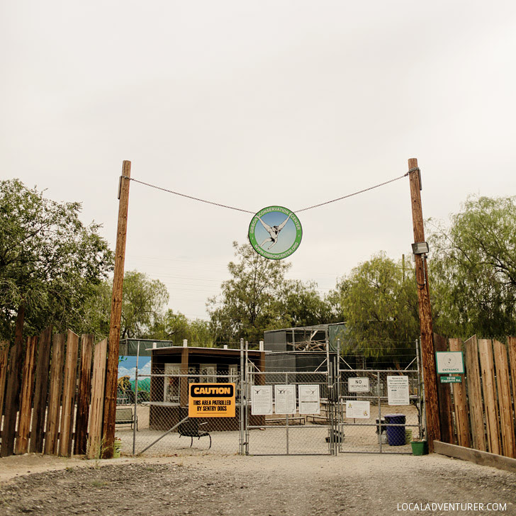 Gibbons Conservation Center.