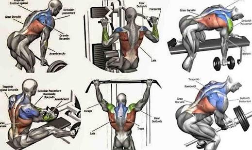 Back Workouts - náhled