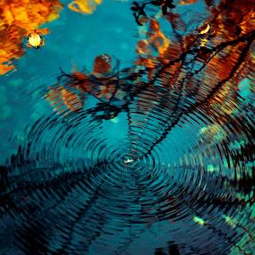 by Игор Ђорђевић - Nature Up Close Water ( Lighting, moods, mood lighting )
