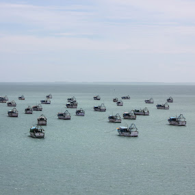 Boats by Karthic Kumar - Landscapes Waterscapes ( indian ocean, water, mini ship, ship, ocean, india, beach, boat )