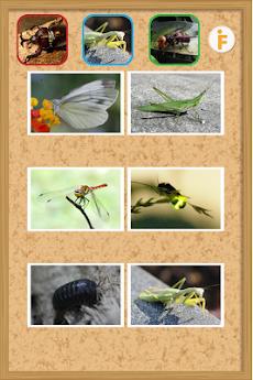 とびだす昆虫園-赤ちゃん・幼児・子供向け知育アプリのおすすめ画像2