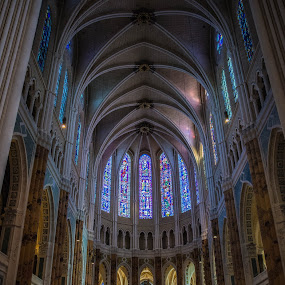 Cathedrale by Denis Sinoussi - Buildings & Architecture Public & Historical ( church, colors, chartres, vitrail, cathedral,  )